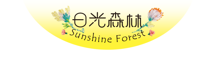 日光森林_Sunshine Forest