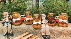 小熊蜂蜜罐